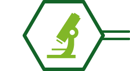 icono-investigacion