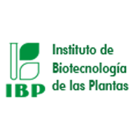 logo-ibp